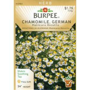 Burpee 66019 Herb Chamomile, German Seed Packet Patio