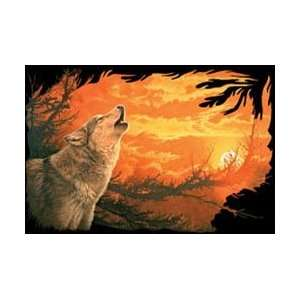 T shirts Animals Wildlife Wolf Evening Glow XXL