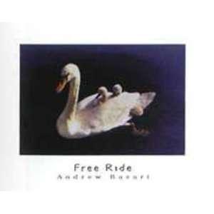 Andrew Basari   Free Ride Canvas