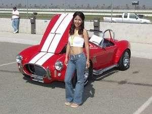 10 Cobra Kit Car Rally Stripe Stripes decal decals GT
