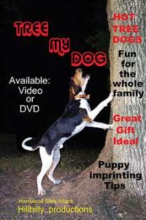 Tree My Dog Coon Hunting Video   HuntSmart