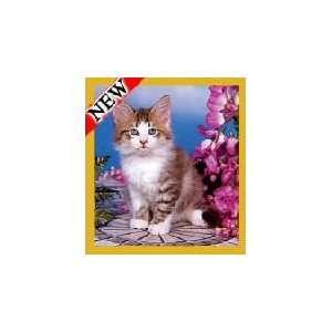 New Magnetic Bookmark Flower Garden Kitten High Quality