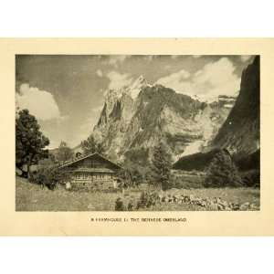 Swiss Chalet Mountain Alps   Original Halftone Print Home & Kitchen