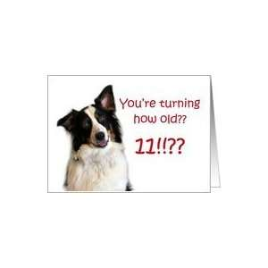 Dog Years, Birthday 11 Years Old Card: Toys & Games