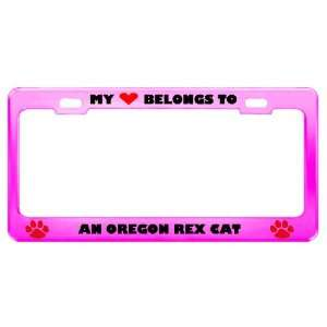 An Oregon Rex Cat Pet Pink Metal License Plate Frame Tag