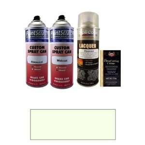 Pearl Metallic Spray Can Paint Kit for 1997 Ford T Bird (WR/M6669