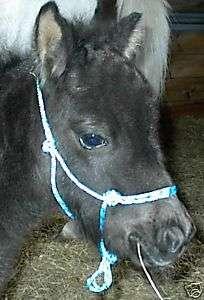 NEW Miniature/Mini Horse FOAL SIZE ROPE HALTER