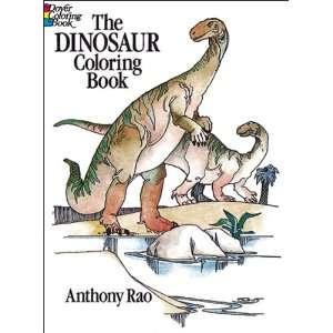 Dover Publications Dinosaur Coloring Book (DOV 24022) Toys & Games