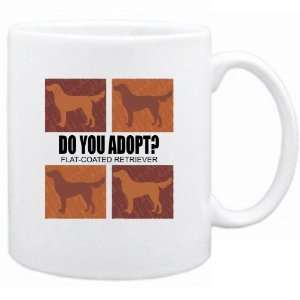 New  Do You Adopt Flat Coated Retriever ?  Mug Dog Home