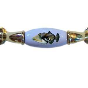 Picasso Triggerfish Tropical Fish BRASS DRAWER Pull Handle