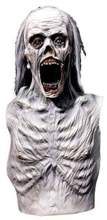 Adult Mummified Corpse Costume   Scary Halloween Costumes   15DU1410