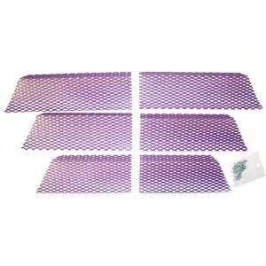 Screen Kit Arctic Cat Purple Automotive