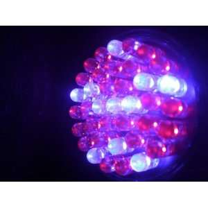 Acne Blue Red LED Light Therapy 38 LED Bulb for Treatment