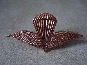 Iraqi Air Force & Special Force JUMP Wings Pin Beret Badge